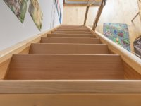 Buche Stufen und Kiefer Wangen